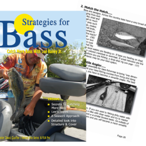 Lee Bailey Jr Strategies For Bass
